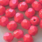 ohňovka korálově červená