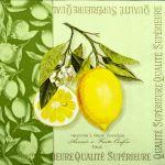 decoupage ubrousek citron a větvička